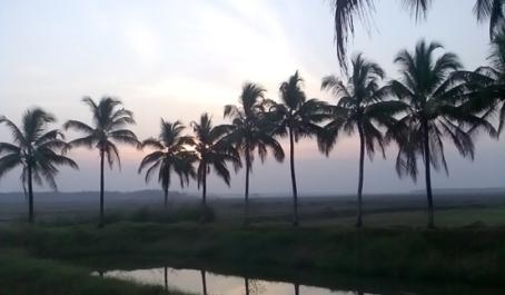 Sunrise at Eravu